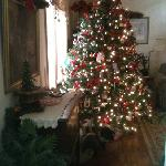 the tree in the parlor