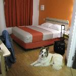 Motel 6 Chicago Joliet - I-55의 사진