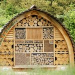 A home for bees