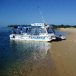 Sea-Safari Eco-Tours