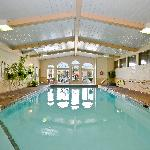 Indoor pool, hot tub & steam room