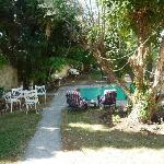 Foto de St. Thomas Bed and Breakfast