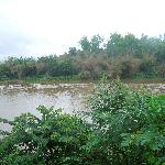 Tunga river during the monsoons