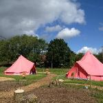 the first two glamping tents!
