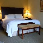 Foto de Hampton Inn & Suites Huntsville Hampton Cove