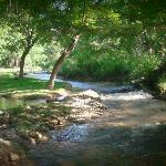 S. Concho River beside Morning Glory House B&B