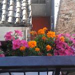 Abundant colors are bound to make you happy! (balcony at No 53)