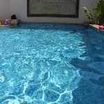 Wide private pool (grand garden living)