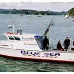 Blue Sea Charters