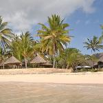 Driftwood Beach Club Malindi