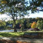Perfect Fall Day in Elm Park, Worcester, MA