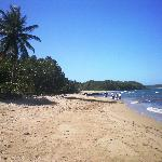 Puerto Plata Runners by Runners Adventures Day Tours