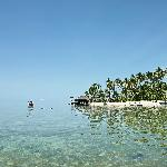 Foto de Derawan Dive Lodge