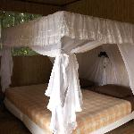 Cuyabeno Lodge luxury rooms