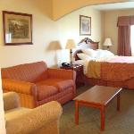 BEST WESTERN PLUS Capital Innの写真
