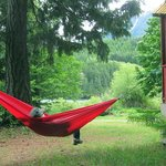 between 2 cabins. Bring a hammock, if you have one. Plenty of trees!