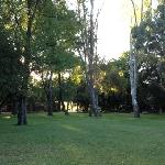 Lots of space for kids to run around and play. Very peaceful and cool under the trees.