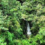 View of the waterfall from Hidden Valley trails (on Monteverde Inn property)