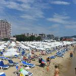  Sunny Beach