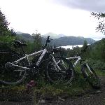  Recommended route - Argyll Forest Park
