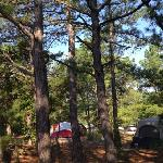 Cape Henlopen campground