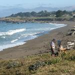  Moonstone Beach