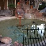 Foto di Inn at Rio Rancho Hotel & Conference Center