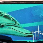 Cruise in the depths of Guy Harvey artwork aboard the SunVenture Destin boat.