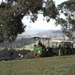 Kerrisdale Mountain Railway Foto