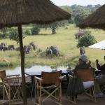 View from the outdoor restaurant and the elephants at water hole
