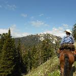 Yellowstone Mountain Guides Day Tours