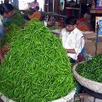  Chillies at Jyotiba Phule market