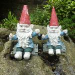  Friendly Gnome Welcome! :-)