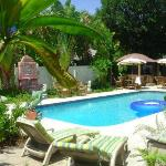 Tropical pool area, with plenty of room to sun your buns!