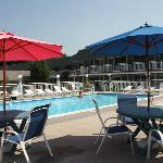 Umbrellas and chairs surround our swimming pool