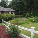 Wyndhaven Cottage Bed And Breakfast.