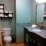 Hampton Inn & Suites Wilder resmi