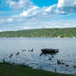  babyark and Keuka Lake