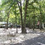 Photo de Seashore Campsites