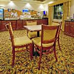 Holiday Inn Express Hotel &amp; Suites Levelland