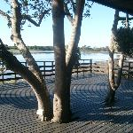 Plett River Lodge照片