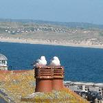 The view from the top floor window, gulls extra