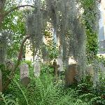 Tombstones at the Unitarian Churchyard
