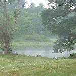 view of the mist on the river behind the lodge early in the morning