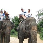Thai Private Tour Guide