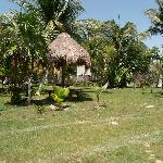 Photo de Golden Paradise Camping Area
