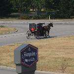 Foto de Hampton Inn & Suites Middlebury