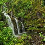 Maui Photo Tours