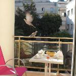 Pigeons can steal your breakfast :)