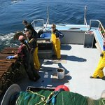 On the Sea with the Coastal Fishermen Day Tours